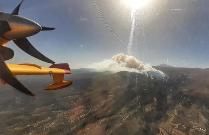 Gaisro plotas Tenerifeje issiplete iki 1100 hektaru