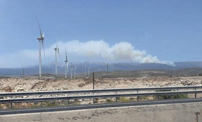 Tenerifes pietryciuose, Arico regiono miske kilo gaisras